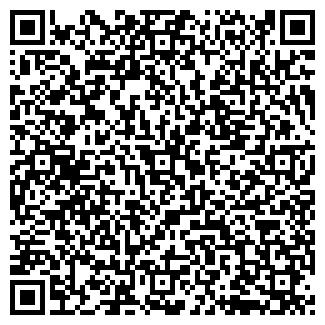 QR-код с контактной информацией организации ВИЛС, ЧП