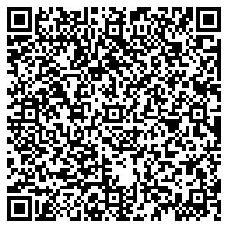 QR-код с контактной информацией организации BVA GROUP