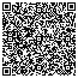 QR-код с контактной информацией организации ДИСМА, ЧП