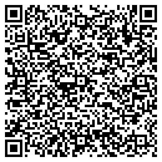 QR-код с контактной информацией организации РУСИН-2002, ЧП