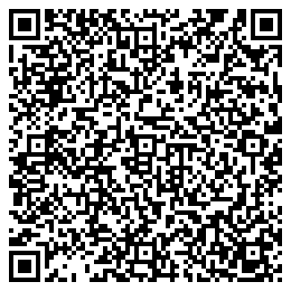 QR-код с контактной информацией организации РАЙЗ, ЗАО