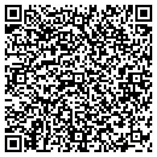 QR-код с контактной информацией организации ВИП-РЕНТ, ПИИ