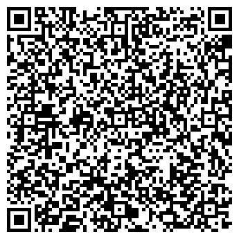 QR-код с контактной информацией организации СВЕТ ЗВЁЗД