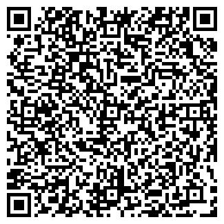 QR-код с контактной информацией организации ООО ТИНГ
