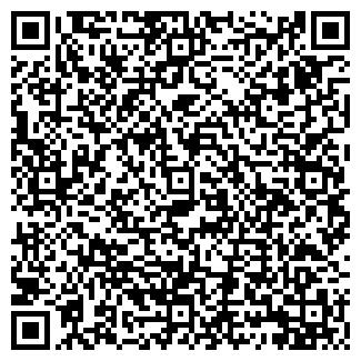 QR-код с контактной информацией организации Колизей