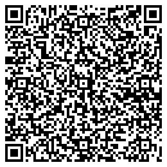 QR-код с контактной информацией организации ВАНИЛЬ