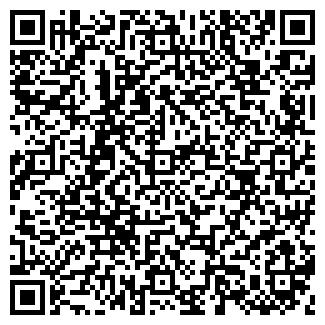 QR-код с контактной информацией организации ООО АРГУС ЛТД