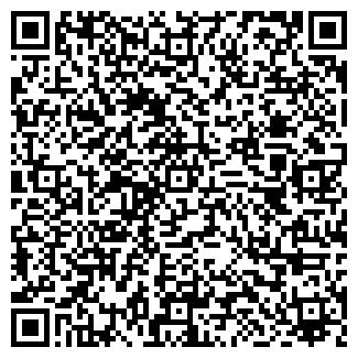 QR-код с контактной информацией организации ШАНДОР, ЧФ