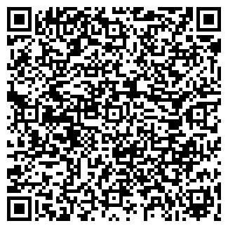 QR-код с контактной информацией организации ВОЛНА ПЛЮС