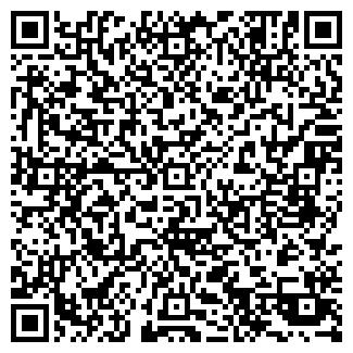 QR-код с контактной информацией организации ООО ДЕЛФИС ПКФ