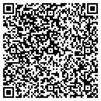 QR-код с контактной информацией организации ВЕКТОР ЧФ
