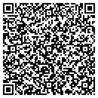 QR-код с контактной информацией организации NEW LIFE