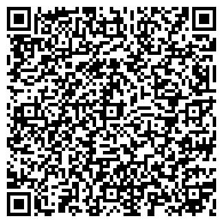 QR-код с контактной информацией организации IVEKO, ООО
