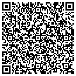 QR-код с контактной информацией организации СТН