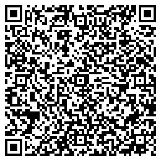 QR-код с контактной информацией организации ЧЕМОДУРОВО