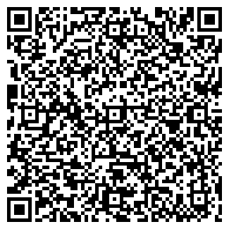 QR-код с контактной информацией организации ВИЗИТ, ЧП