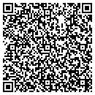 QR-код с контактной информацией организации ЛИВС-КМ, ООО