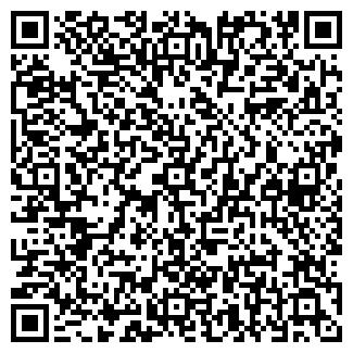 QR-код с контактной информацией организации ВВ СЕРВИС, ООО