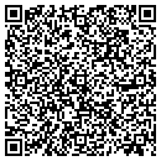 QR-код с контактной информацией организации БИНА, ЧФ
