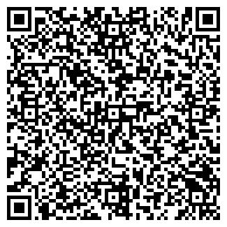 QR-код с контактной информацией организации СТРОЙДВОР, ЧП
