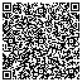QR-код с контактной информацией организации БАГИРА, ЧФ