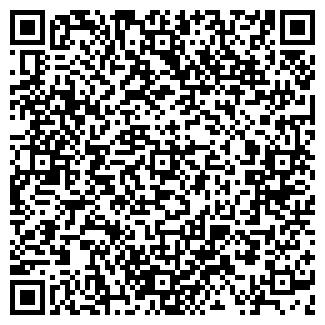 QR-код с контактной информацией организации РОДИНА, ФИРМА