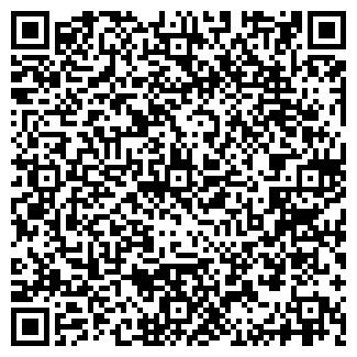 QR-код с контактной информацией организации SEO-DOM.OD.UA
