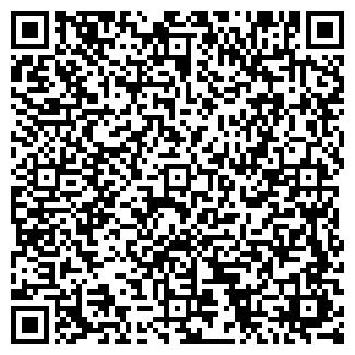 QR-код с контактной информацией организации ТЕЙЛО, ЧП