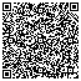 QR-код с контактной информацией организации ВИСА, ООО, ДЧП