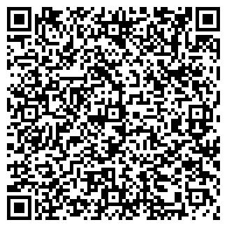 QR-код с контактной информацией организации СИЛИКАТ, ОАО