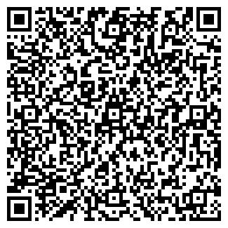 QR-код с контактной информацией организации ВИДЗЕВ, ЧП