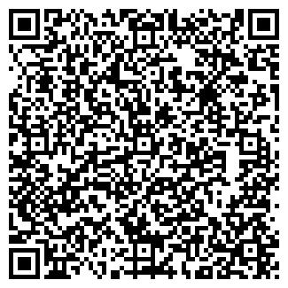 QR-код с контактной информацией организации Мини
