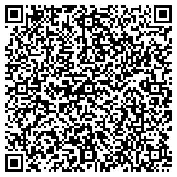 QR-код с контактной информацией организации ДВА ТЮЛЕНЯ