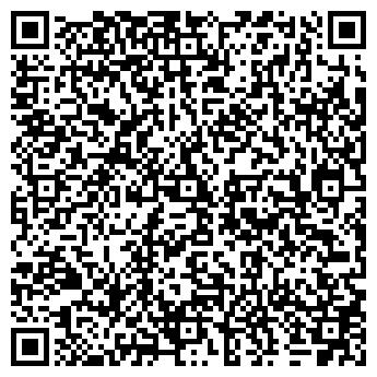 QR-код с контактной информацией организации ИП Алиев А.М.
