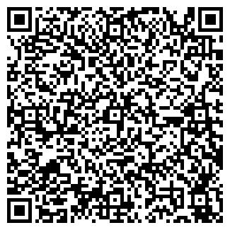"""QR-код с контактной информацией организации LTD """"MC"""""""