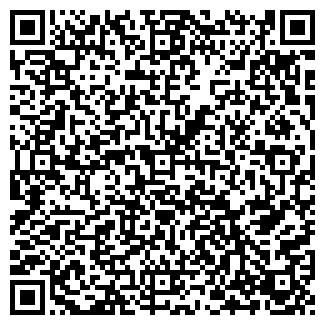 QR-код с контактной информацией организации ИП Давлетшин