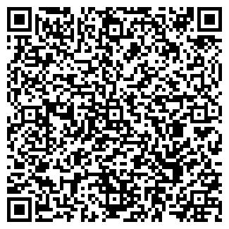 QR-код с контактной информацией организации ИП Сантехник Электрик