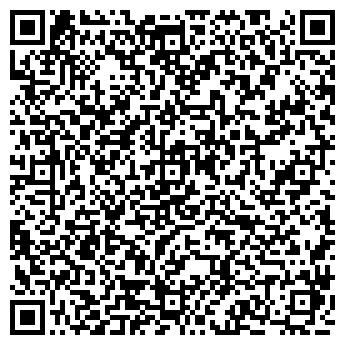 QR-код с контактной информацией организации ИП ИП KSV