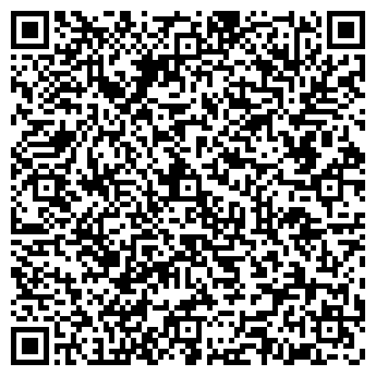 QR-код с контактной информацией организации ИП Bolisher