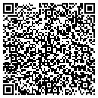 QR-код с контактной информацией организации ИП Шар-ПОЗИТИВ