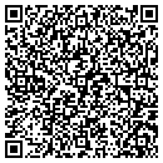 QR-код с контактной информацией организации ИП HomeLook