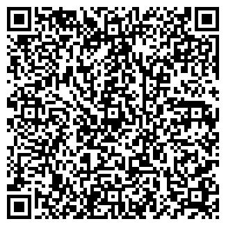 QR-код с контактной информацией организации LLC  Лина