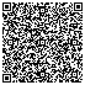 QR-код с контактной информацией организации ИП KINGSTONE