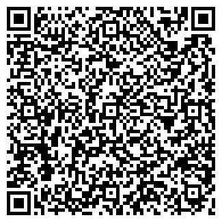 QR-код с контактной информацией организации БИ-ГАЗ-СИ
