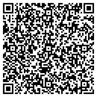 QR-код с контактной информацией организации ИП Ремонтка