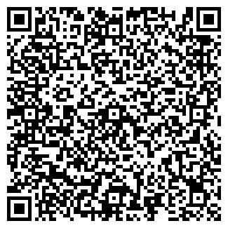 QR-код с контактной информацией организации ИП Кундалев Р.А.