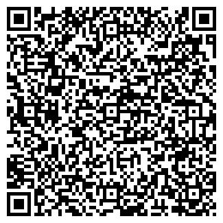 QR-код с контактной информацией организации ИП ИП.Алишер