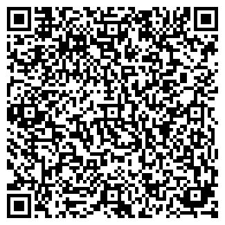 QR-код с контактной информацией организации ИП Sharkon Александр