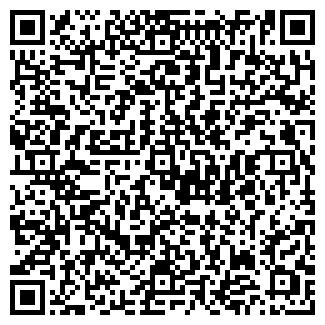 QR-код с контактной информацией организации ООО WoWeb