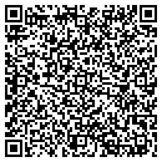 QR-код с контактной информацией организации ИП Копко П.А.